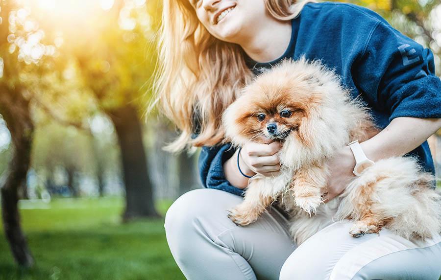 ข้อดีของการเลี้ยงสุนัขและแมวหลายประการ