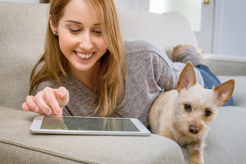 วิธีทำความสะอาดบ้านของเจ้าของที่เลี้่ยงสุนัขและแมว